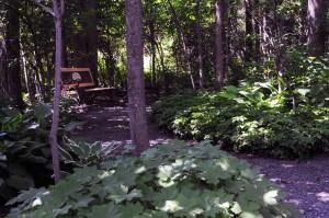 Woodland Garden 2014 resized